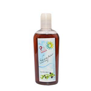 Shampoo capilar